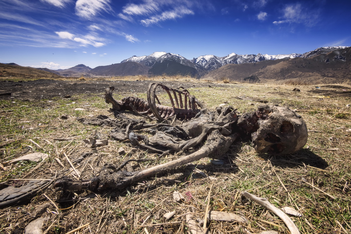 Travelling on the Tibetan Plateau – Tibetan Sky Burial